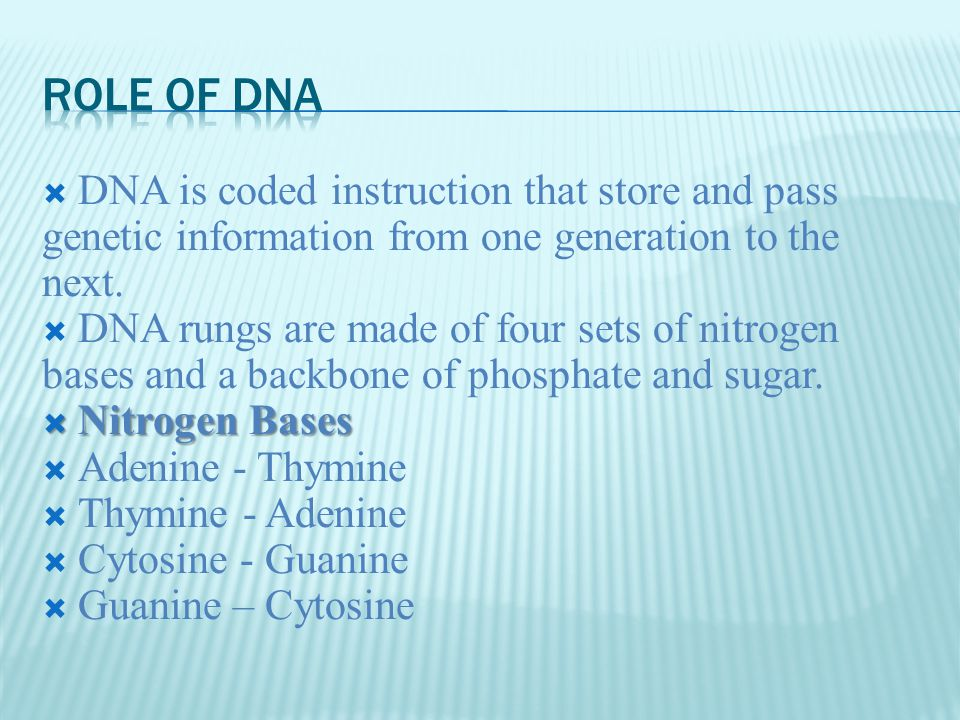  DNA is coded instruction that store and pass genetic information from one generation to the next.