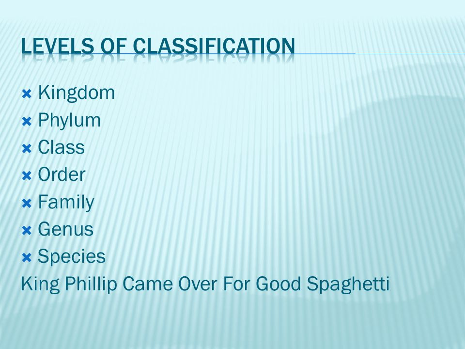  Kingdom  Phylum  Class  Order  Family  Genus  Species King Phillip Came Over For Good Spaghetti