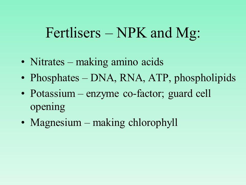 Fertlisers – NPK and Mg: Nitrates – making amino acids Phosphates – DNA, RNA, ATP, phospholipids Potassium – enzyme co-factor; guard cell opening Magnesium – making chlorophyll