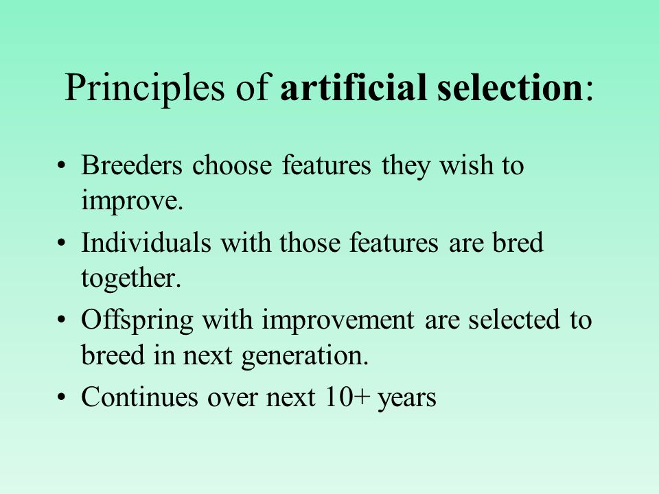 Principles of artificial selection: Breeders choose features they wish to improve.