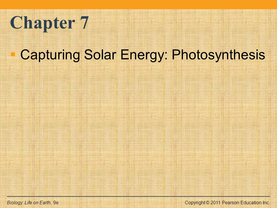Copyright © 2011 Pearson Education Inc.Biology: Life on Earth, 9e Chapter 7  Capturing Solar Energy: Photosynthesis