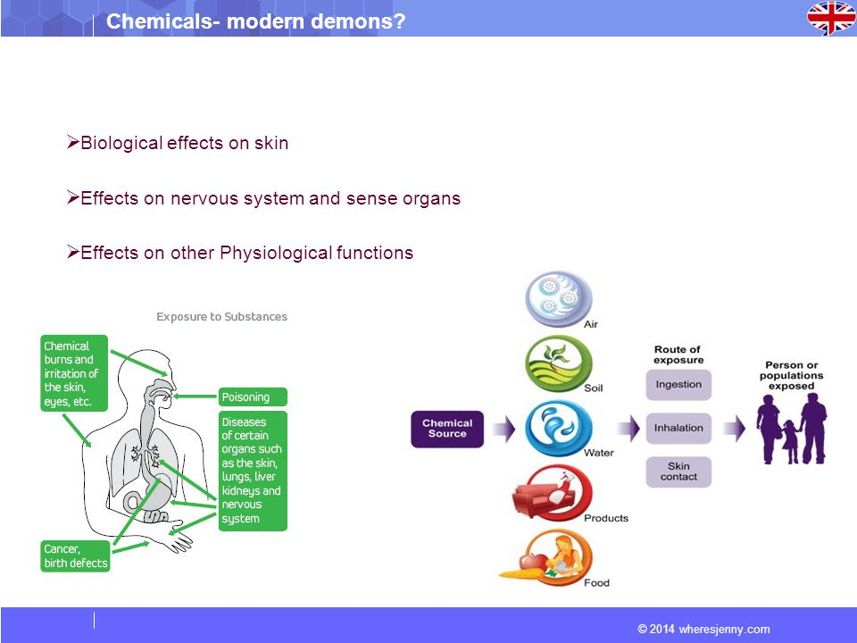 © 2014 wheresjenny.com Chemicals- modern demons?  Biological effects on skin  Effects on nervous system and sense organs  Effects on other Physiolo