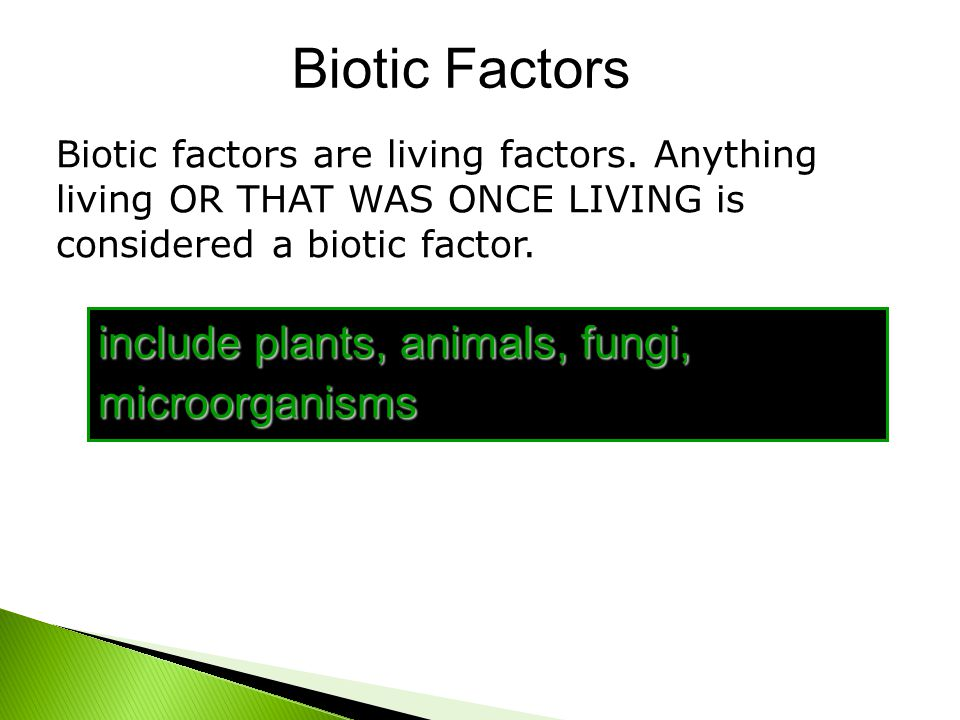 Biotic Factors include plants, animals, fungi, microorganisms Biotic factors are living factors. Anything living OR THAT WAS ONCE LIVING is considered