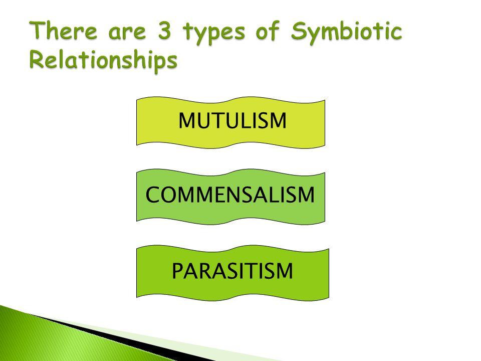 MUTULISM COMMENSALISM PARASITISM