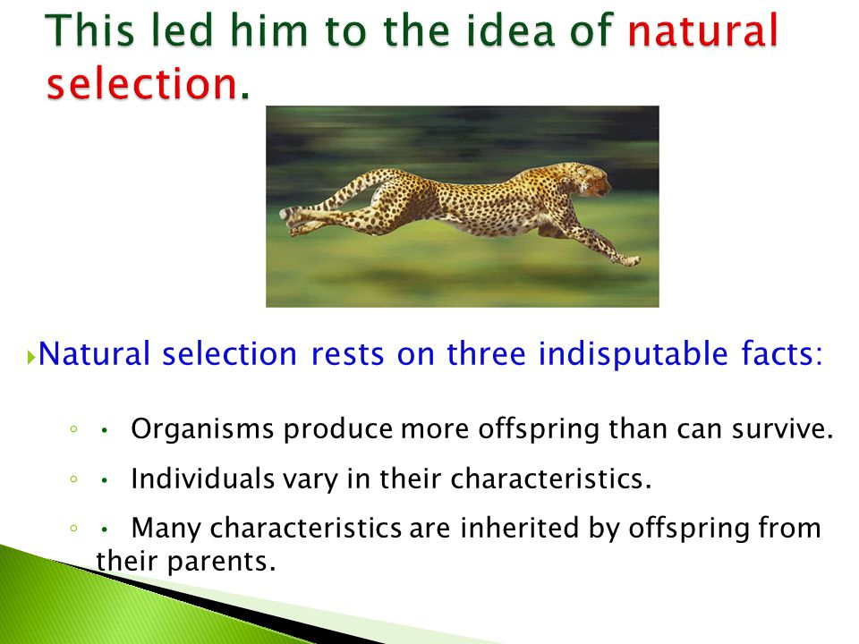  Natural selection rests on three indisputable facts: ◦ Organisms produce more offspring than can survive.