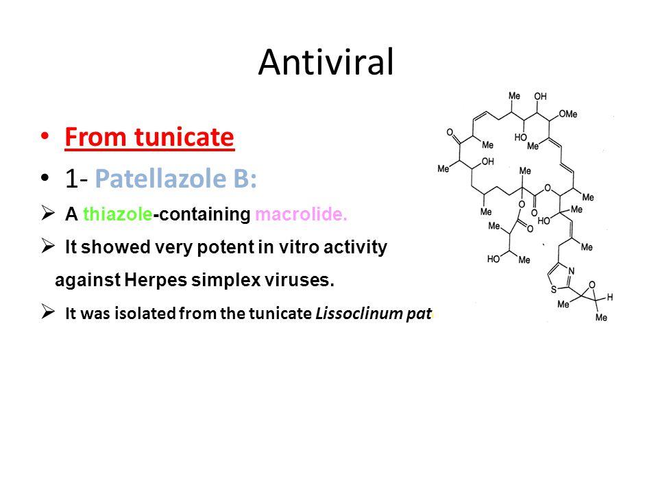 Antiviral From tunicate 1- Patellazole B:  A thiazole-containing macrolide.