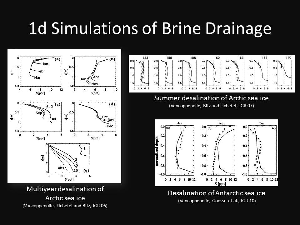 1d Simulations of Brine Drainage Multiyear desalination of Arctic sea ice (Vancoppenolle, Fichefet and Bitz, JGR 06) Desalination of Antarctic sea ice (Vancoppenolle, Goosse et al., JGR 10) Summer desalination of Arctic sea ice (Vancoppenolle, Bitz and Fichefet, JGR 07)