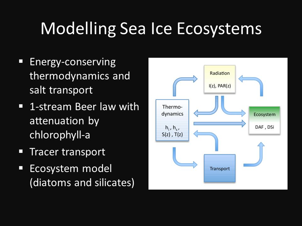 Modelling Sea Ice Ecosystems  Energy-conserving thermodynamics and salt transport  1-stream Beer law with attenuation by chlorophyll-a  Tracer transport  Ecosystem model (diatoms and silicates)