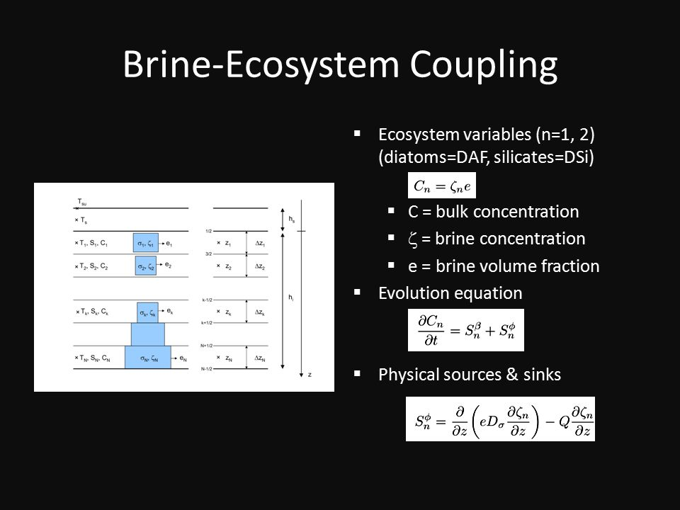 Brine-Ecosystem Coupling  Ecosystem variables (n=1, 2) (diatoms=DAF, silicates=DSi)  C = bulk concentration   = brine concentration  e = brine volume fraction  Evolution equation  Physical sources & sinks