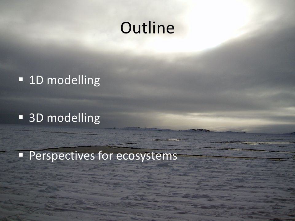 Outline  1D modelling  3D modelling  Perspectives for ecosystems