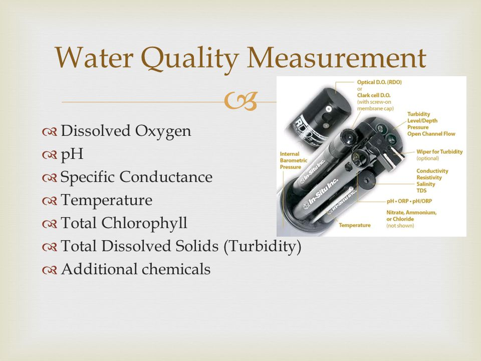   Dissolved Oxygen  pH  Specific Conductance  Temperature  Total Chlorophyll  Total Dissolved Solids (Turbidity)  Additional chemicals Water Quality Measurement