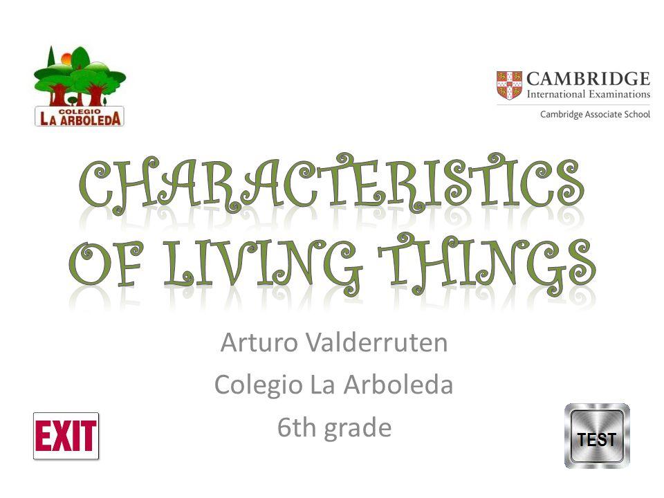 Arturo Valderruten Colegio La Arboleda 6th grade