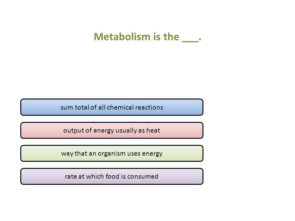 Metabolism is the ___.