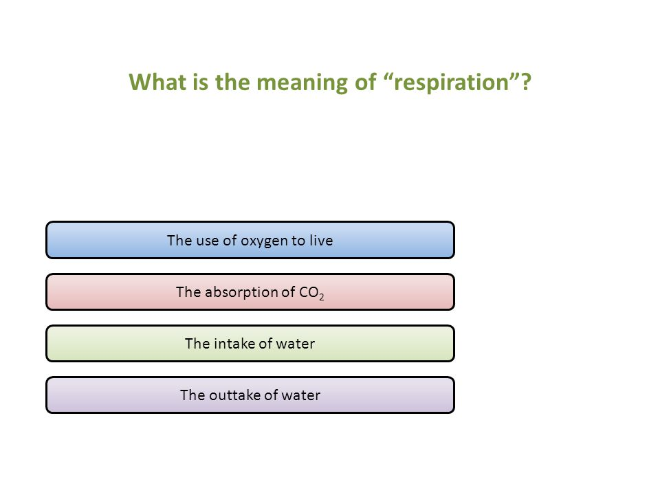 What is the meaning of respiration .