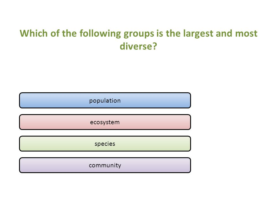 Which of the following groups is the largest and most diverse.