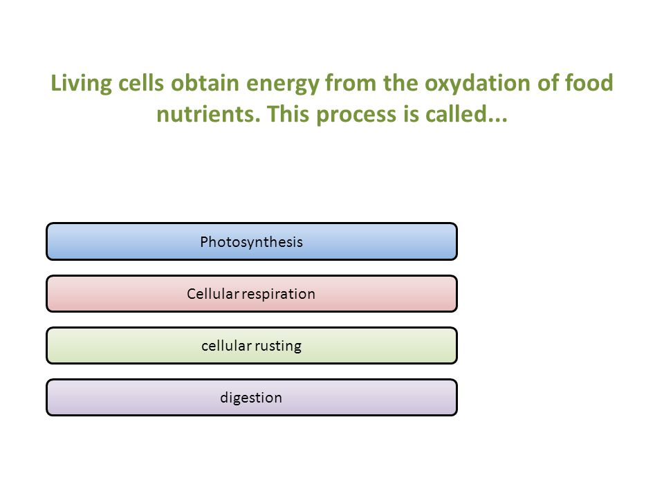 Living cells obtain energy from the oxydation of food nutrients.