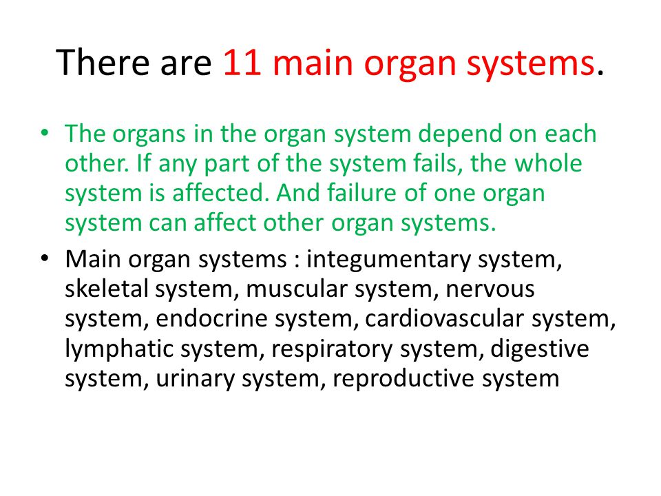 Organism: Independent Living Anything that can live on its own is called an organism.
