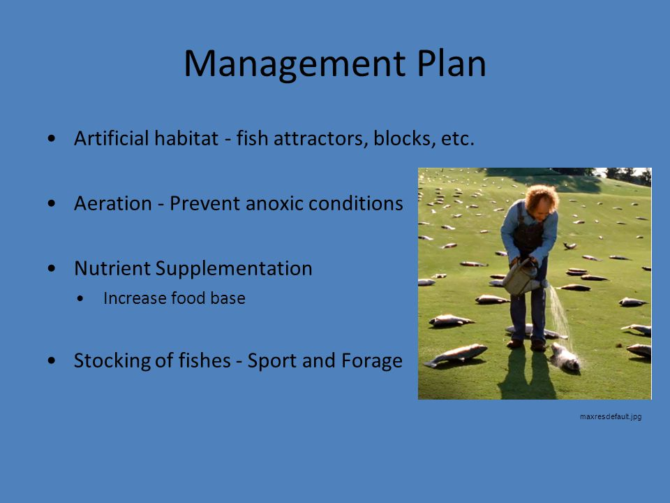 Management Plan Artificial habitat - fish attractors, blocks, etc.