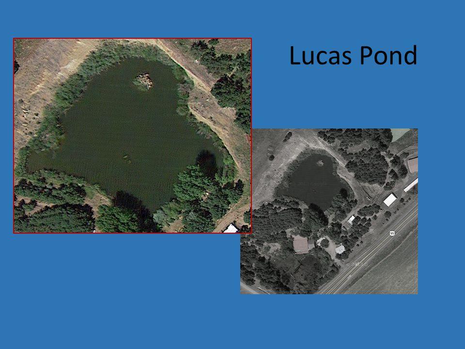 Lucas Pond