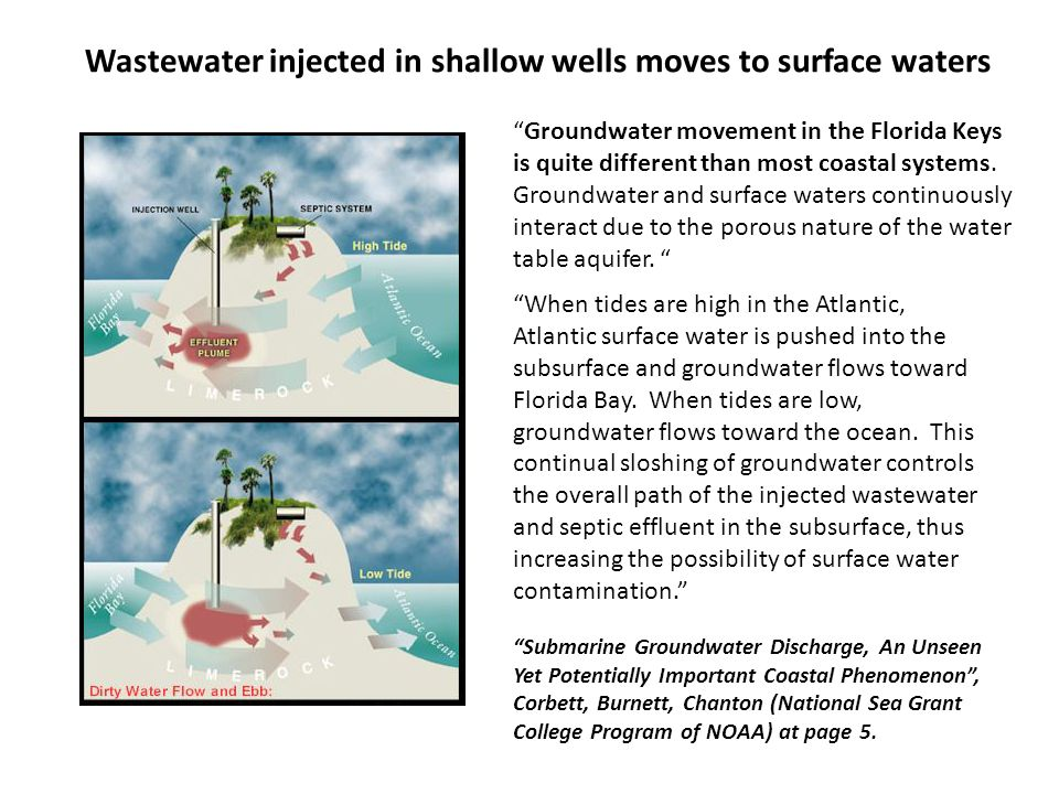 """When tides are high in the Atlantic, Atlantic surface water is pushed into the subsurface and groundwater flows toward Florida Bay. When tides are lo"