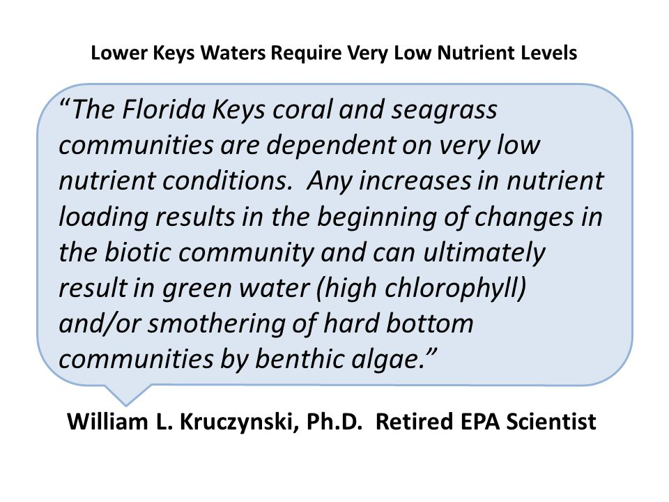 """The Florida Keys coral and seagrass communities are dependent on very low nutrient conditions. Any increases in nutrient loading results in the begin"