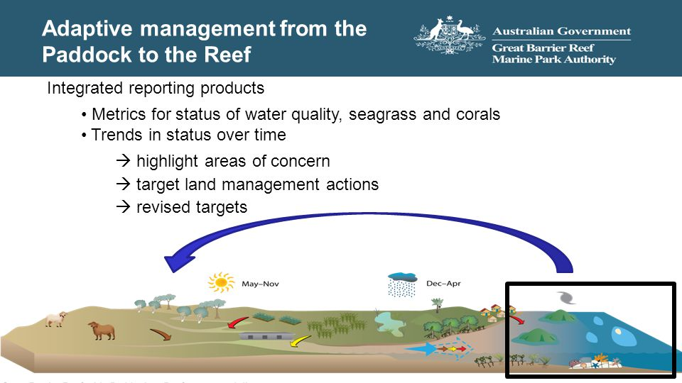 Adaptive management from the Paddock to the Reef Integrated reporting products Metrics for status of water quality, seagrass and corals Trends in stat