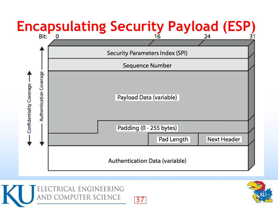 37 Encapsulating Security Payload (ESP)