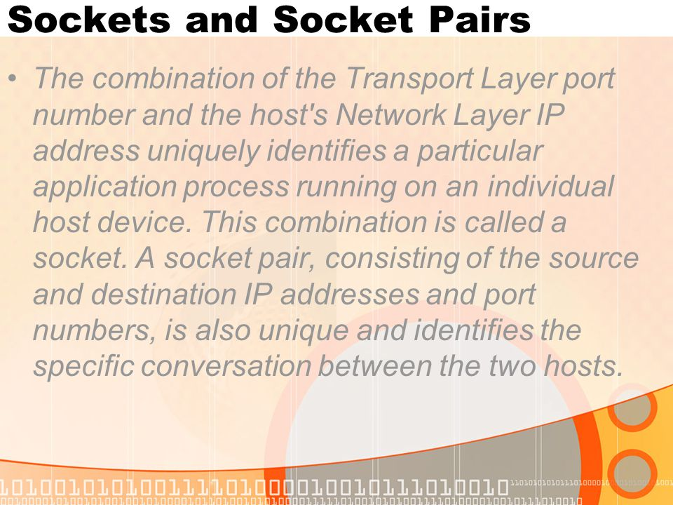 Sockets and Socket Pairs The combination of the Transport Layer port number and the host's Network Layer IP address uniquely identifies a particular a