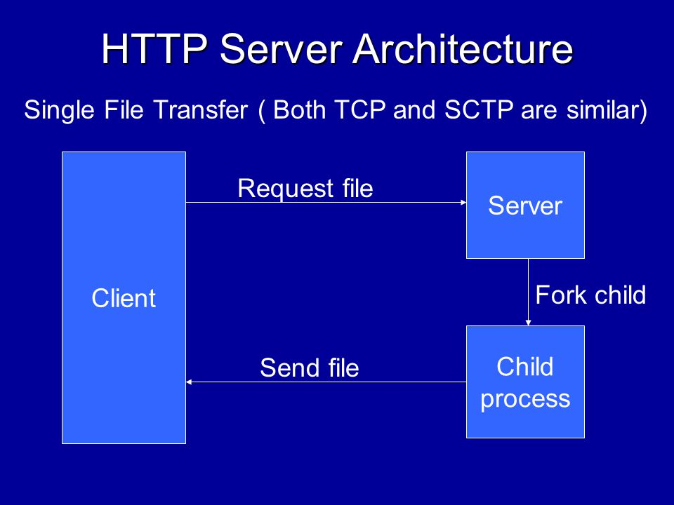 Server Architecture Single File Transfer –Server forks a child process for each request –Child parses the request and sends the requested file or an appropriate error message –Similar for both TCP and SCTP