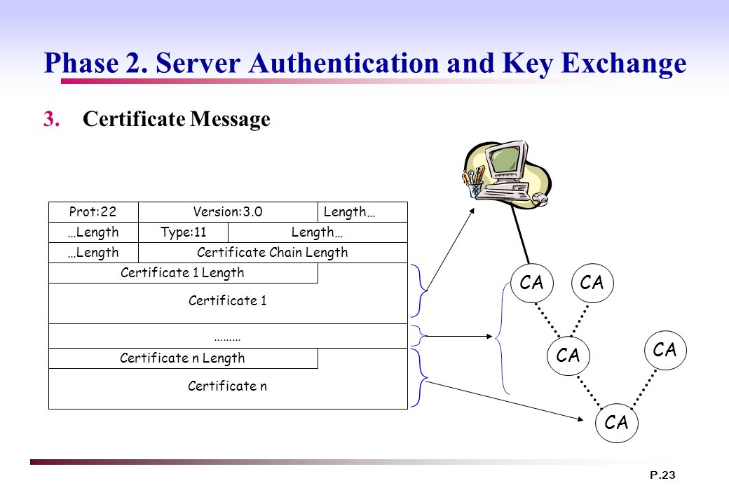 P.23 Phase 2. Server Authentication and Key Exchange 3.Certificate Message Certificate n Certificate 1 Prot:22Version:3.0Length… …LengthType:11Length…