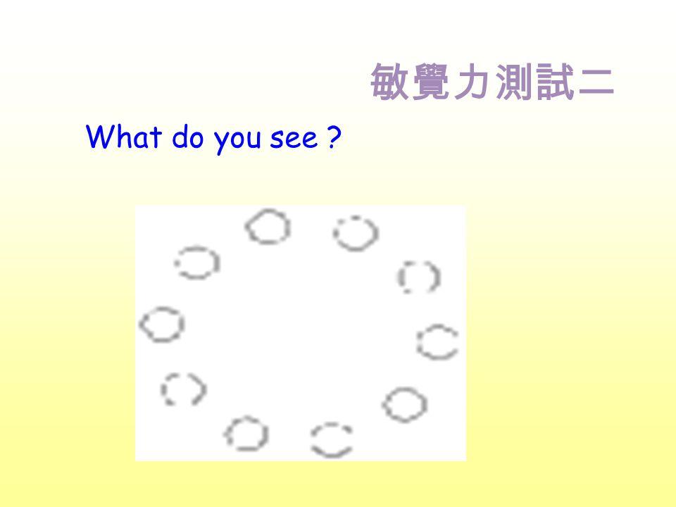 敏覺力測試二 What do you see