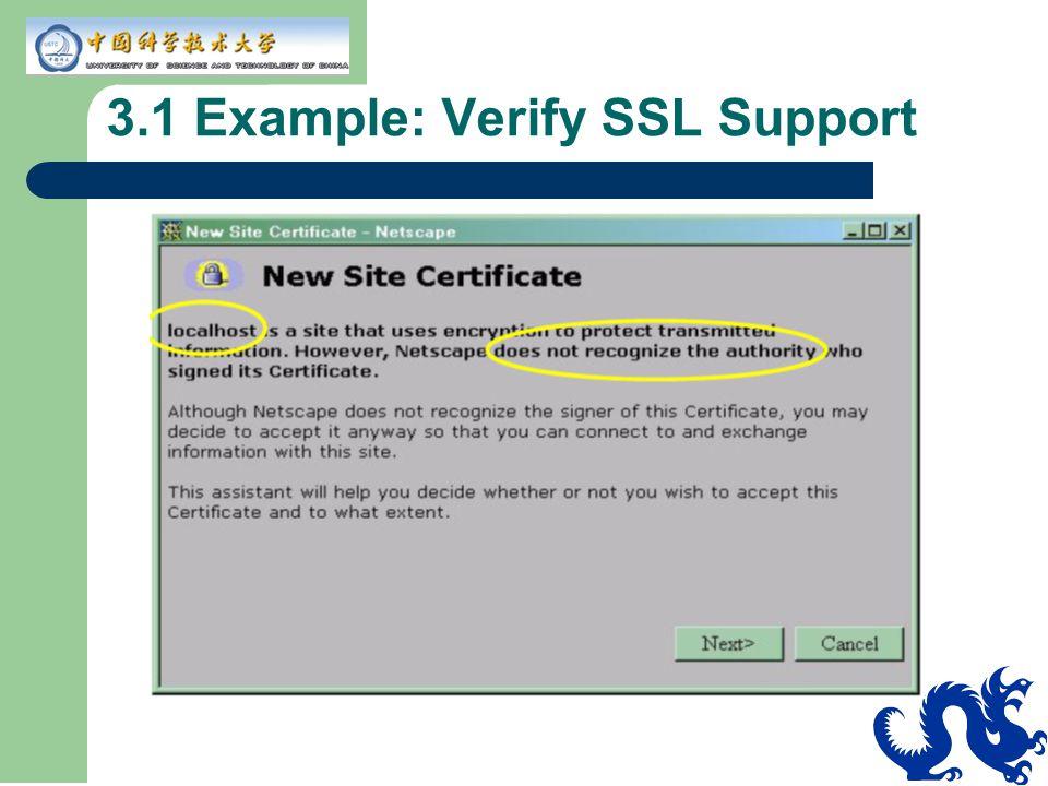 3.1 Example: Verify SSL Support