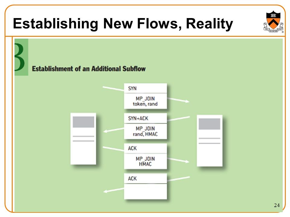 Establishing New Flows, Reality 24