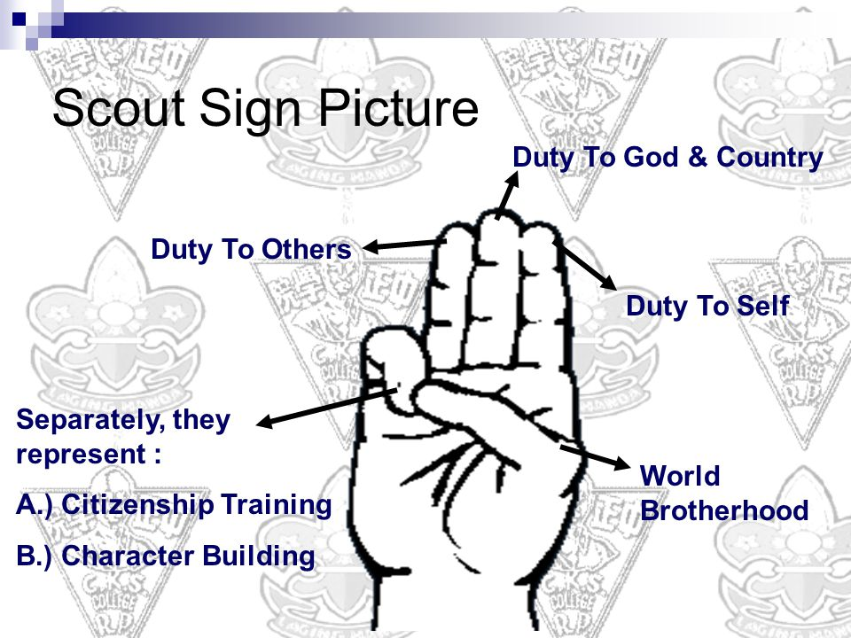 Duty To Self Duty To Others Duty To God & Country World Brotherhood Separately, they represent : A.) Citizenship Training B.) Character Building Scout