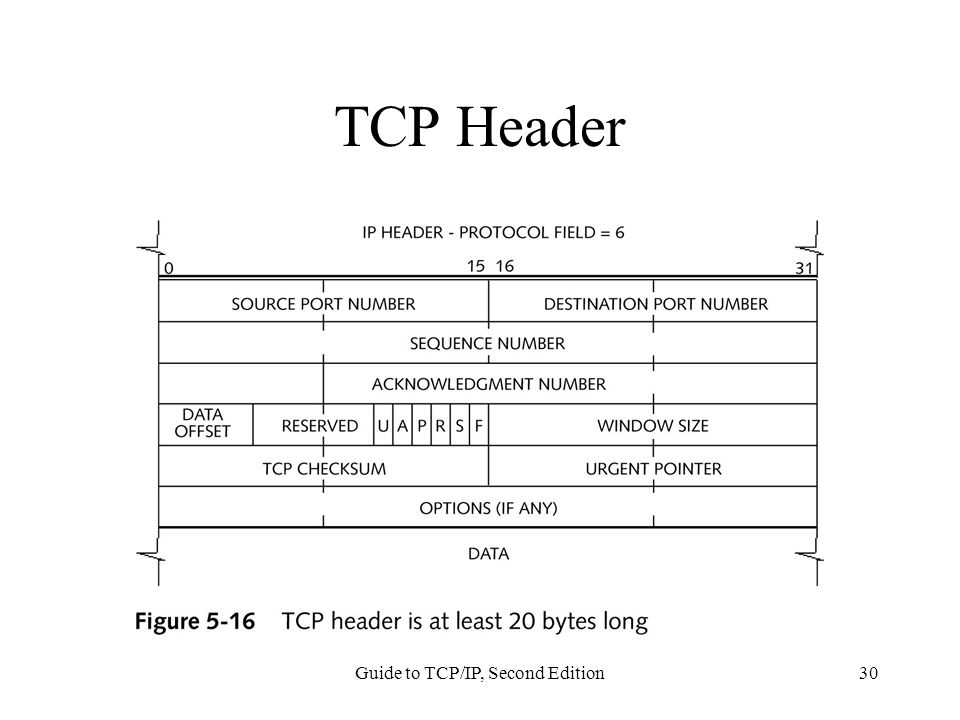 Guide to TCP/IP, Second Edition30 TCP Header