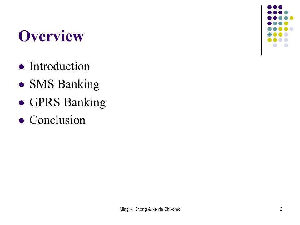 Ming Ki Chong & Kelvin Chikomo13 Current Mobile Banking WIZZIT MTN Mobile Banking Standard Bank FNB ABSA Use WIG (Wireless Internet Gateway)