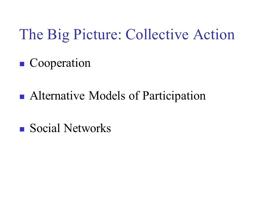 The Big Picture: Collective Action Cooperation Alternative Models of Participation Social Networks