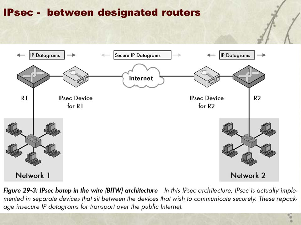 IPsec - between designated routers U