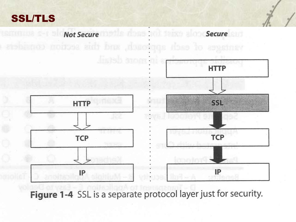 SSL/TLS