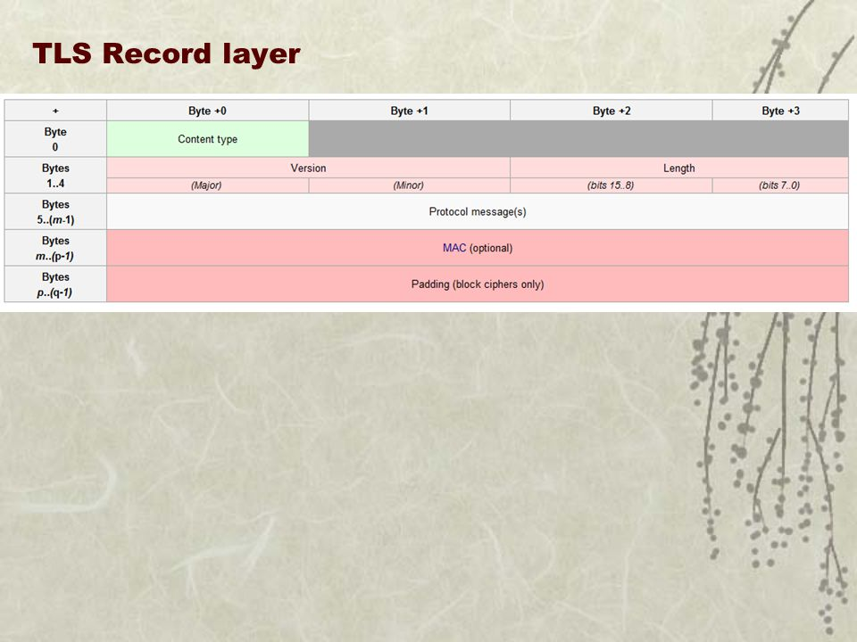 TLS Record layer