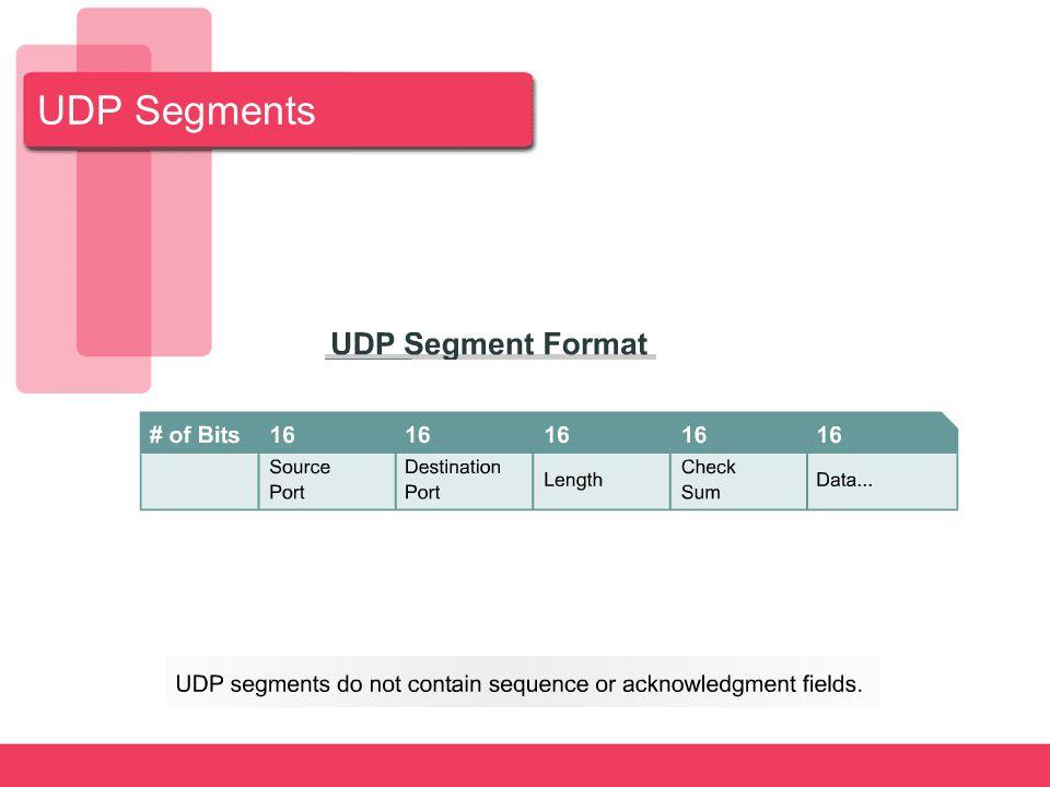 UDP Segments