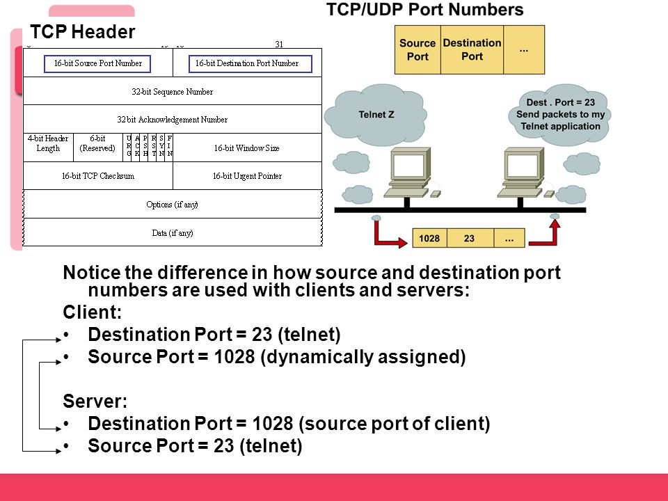 Notice the difference in how source and destination port numbers are used with clients and servers: Client: Destination Port = 23 (telnet) Source Port