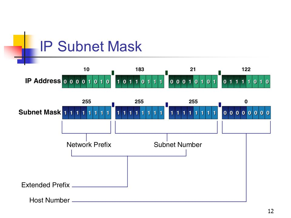 12 IP Subnet Mask