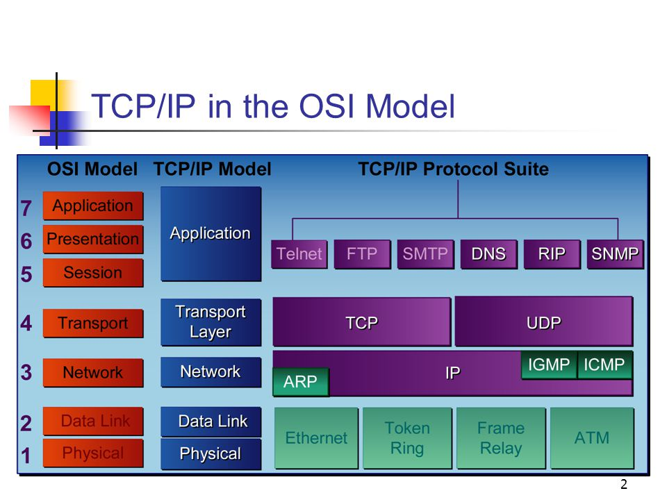 2 TCP/IP in the OSI Model