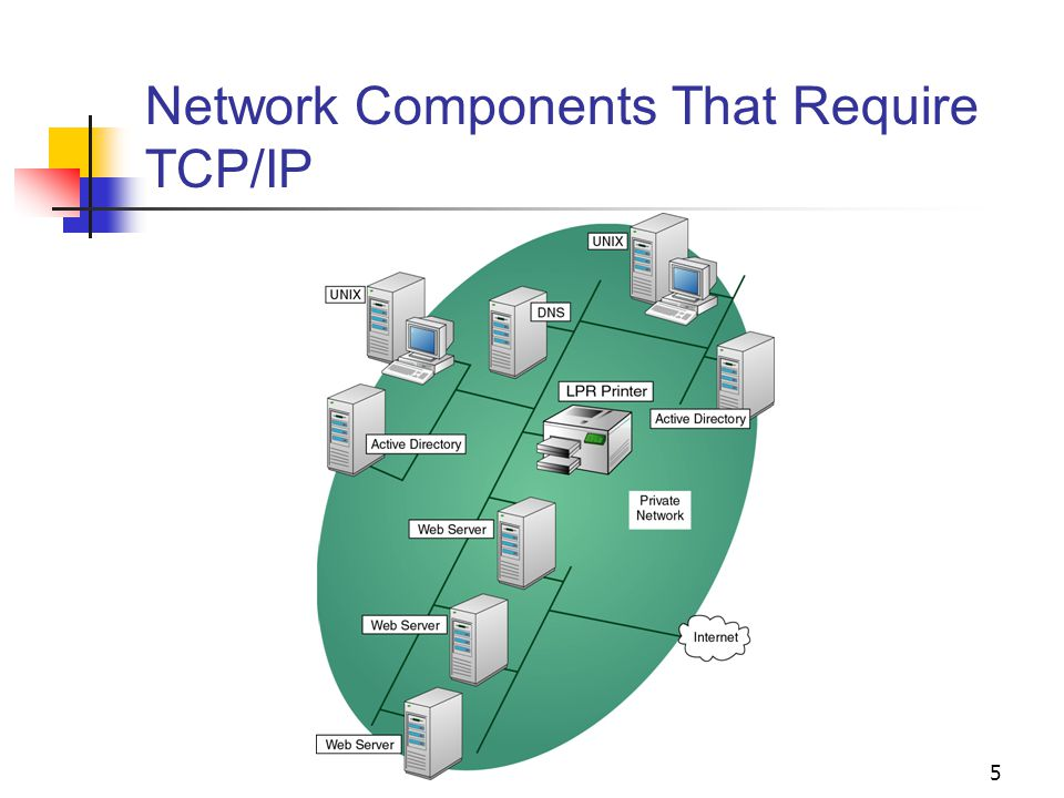 5 Network Components That Require TCP/IP