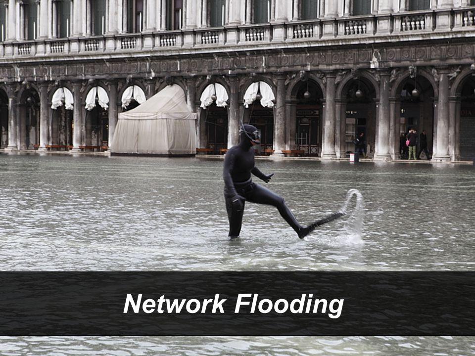  PORTADA INUNDACIÓN 12 Network Flooding
