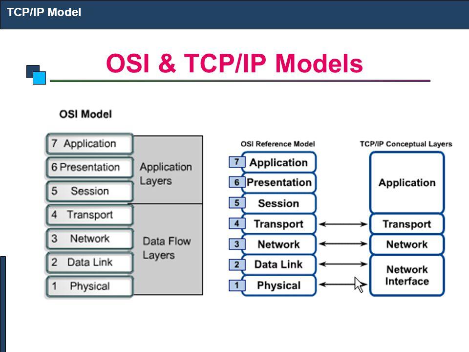 OSI & TCP/IP Models TCP/IP Model