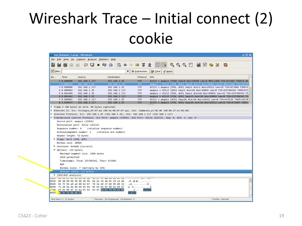 Wireshark Trace – Initial connect (2) cookie CS423 - Cotter19