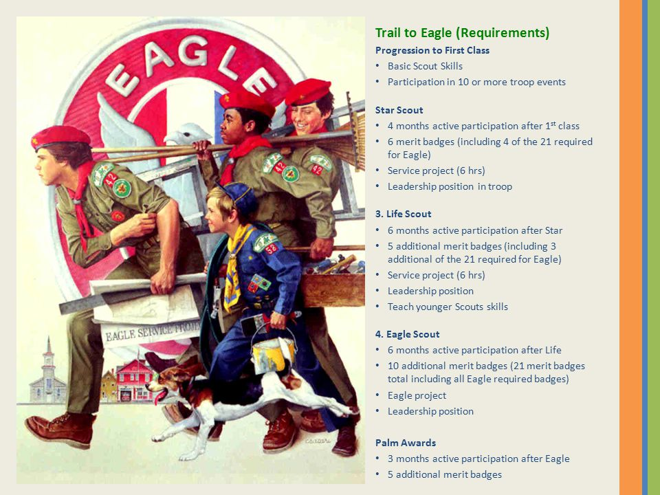 Trail to Eagle (Requirements) Progression to First Class Basic Scout Skills Participation in 10 or more troop events Star Scout 4 months active participation after 1 st class 6 merit badges (including 4 of the 21 required for Eagle) Service project (6 hrs) Leadership position in troop 3.