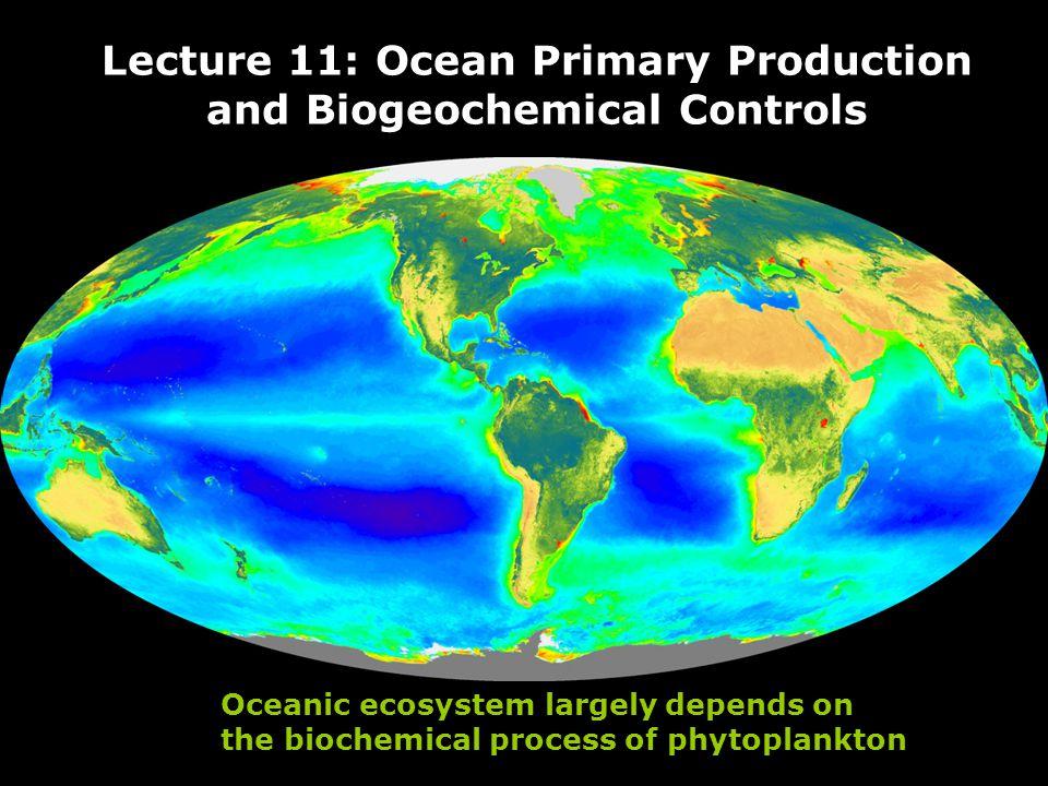 oceanterrestrial area Open oceandeserts continental shelvesforest; grassland upwelling regionsrain forests shallow estuariesfarmlands
